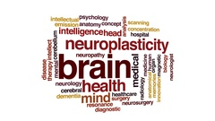 Brain animated word cloud, text design animation. Stock Footage