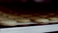 The halves of macarons, lying on the plate Stock Footage