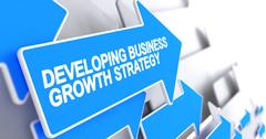 Developing Business Growth Strategy - Inscription on the Blue Cu Stock Illustration