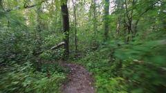 Pov running on trailway in pine woods bushes forest in summertime on cloudy day Stock Footage