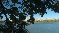 Jacqueline Kennedy Onassis Reservoir with the Upper West Side behind the foliage Stock Footage