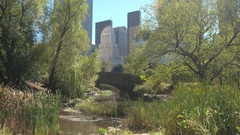 CLOSE UP: Beautiful Gapstow Bridge in sunny Central Park with NYC skyline Stock Footage