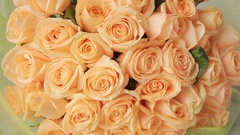 Gentle big bouquet of peach roses, close-up Stock Footage
