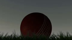 A shallow depth of focus time lapse over a day of a cricket ball in the grass Stock Footage