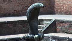 Element of architecture in the form of cobra closeup in Kathmandu Nepal. Stock Footage