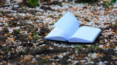 On the ground, covered with white petals is an open weekly. Wind turn pages Stock Footage