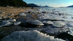 Aerial Scenic Intertidal Alaska Ice Chunks in Late Winter Stock Footage