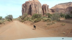 View from a car window of a black sheperd dog running on red desert in monu.. Stock Footage