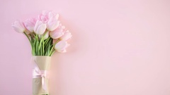 Bouquet of pink tulips on a pink background. Stock Footage