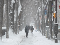 People walking street in snow in New York City newar Central Park Stock Footage