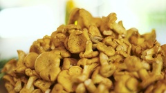 Pile of chanterelles. Stock Footage