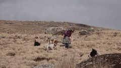 Female Shepherd in the andean mountains. Stock Footage