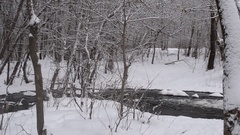 Mountain spring stream in the snow covered forest, spring flooding in the par Stock Footage