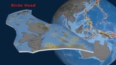 Birds Head tectonics featured. Topo and bathy Stock Footage