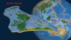 Birds Head tectonics featured. Satellite imagery Stock Footage