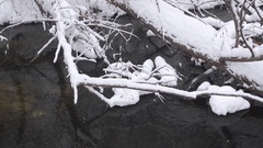 Cold creek spring, the shore covered with snow and ice, fallen trees in the Stock Footage