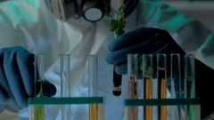 Bio laboratory experiment with germ of GMO's plant. Scientist in protective mask Stock Footage
