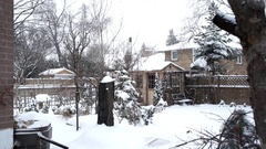 Suburb of Toronto on a snowy February day.  Backyard with shed, a frozen water Stock Footage