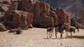 Jordanian rides on a donkey in ancient city of Petra, Jordan HD Footage