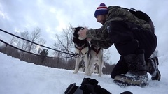 Dogsledding man with husky dogs playing and kissing Stock Footage