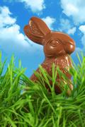 A chocolate Easter bunny outside in the tall grass. Stock Photos