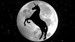 Unicorn. Black silhouette. 4K. Stock Footage
