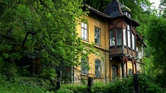 An old-fashioned house on the edge of a forest Stock Footage