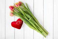 Spring tulips and plush heart Stock Photos