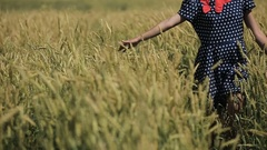 Hand of girl in the wheat field Stock Footage