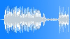 Car Interior Horn 04 Sound Effect