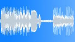 Car Interior Horn 01 Sound Effect