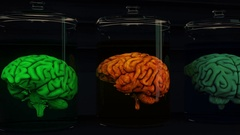 4K Human Brains in Science Laboratory Glasses Cinematic 3D Animation 2 Stock Footage