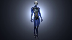 4K Sick Internal Organs and Skeleton in a Transparent Human Body Anatomical L Stock Footage