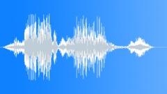 Fake News Voiceover Sound Effect