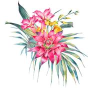 Watercolor vintage floral tropical greeting card Stock Illustration