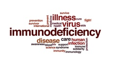 Immunodeficiency animated word cloud, text design animation. Stock Footage
